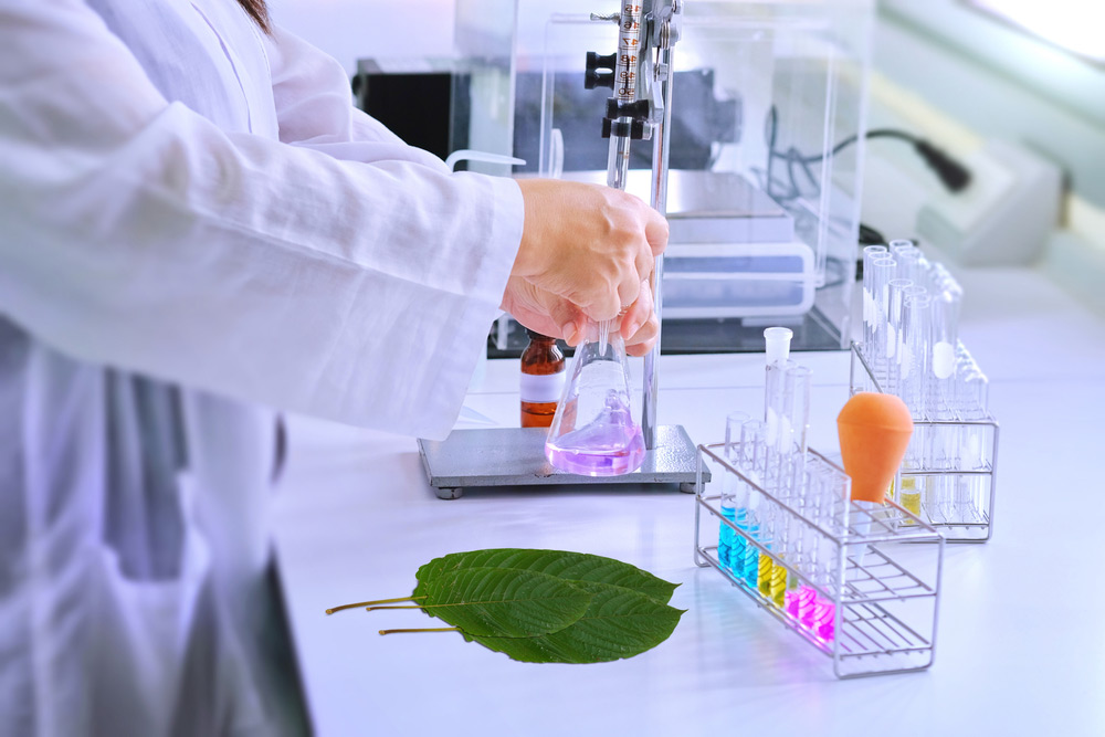 what is kratom image of kratom leaves in laboratory