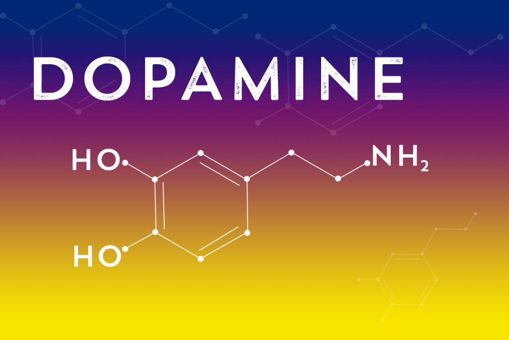 beginningstreatment-why-understanding-dopamine-is-crucial-to-treating-opioid-addiction-vector-of-dopamine